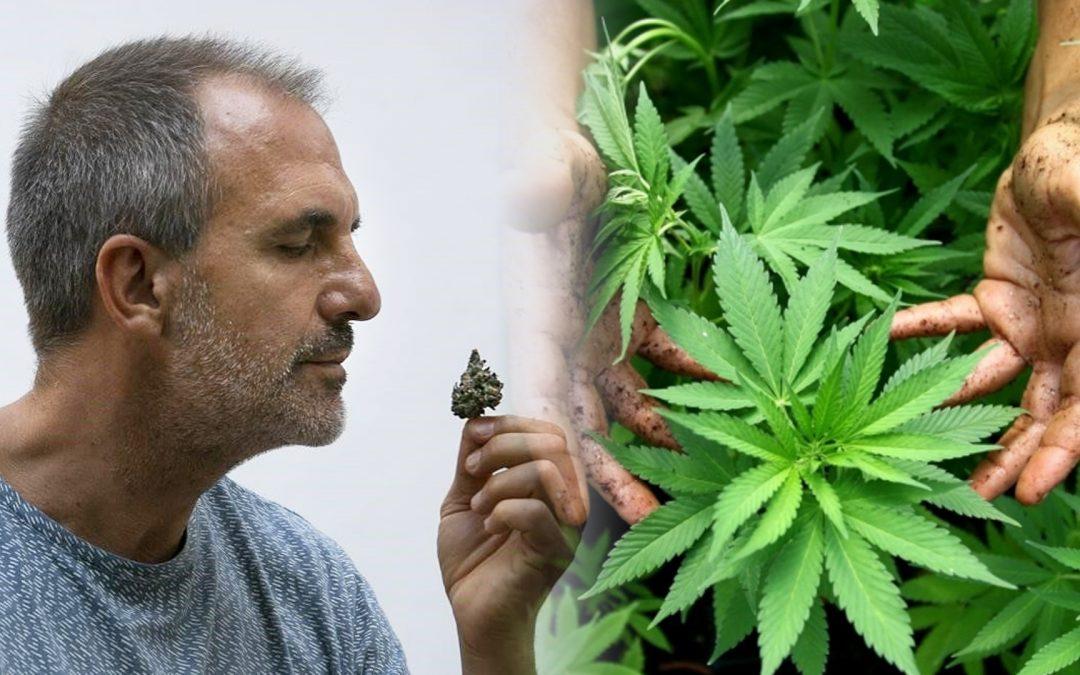 Albert Tió i Victor Segués porten 254 dies a la presó per gestionar un club de cànnabis Mentre esperen l'indult del govern espanyol, neix un partit polític d'àmbit estatal i europeu que vol presentar una llei integral sobre la substància al Congreso